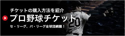 チケットの購入方法を紹介 プロ野球チケット セ・リーグ、パ・リーグ全球団網羅