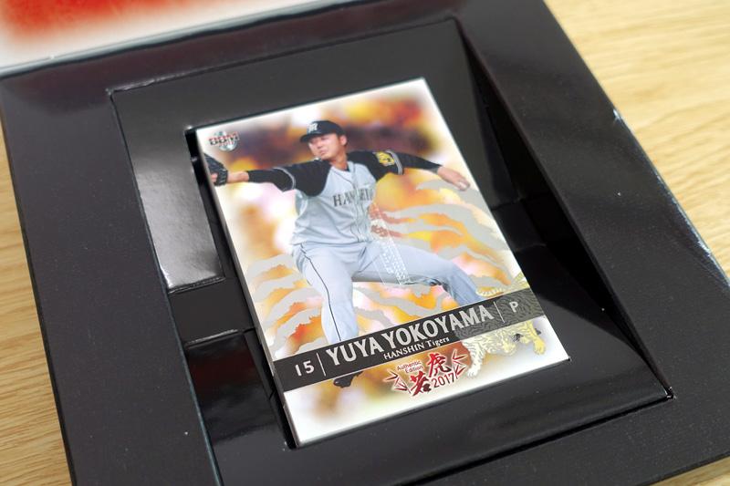 BBM Authentic Edition 若虎 2017 阪神タイガースベースボールカードセット